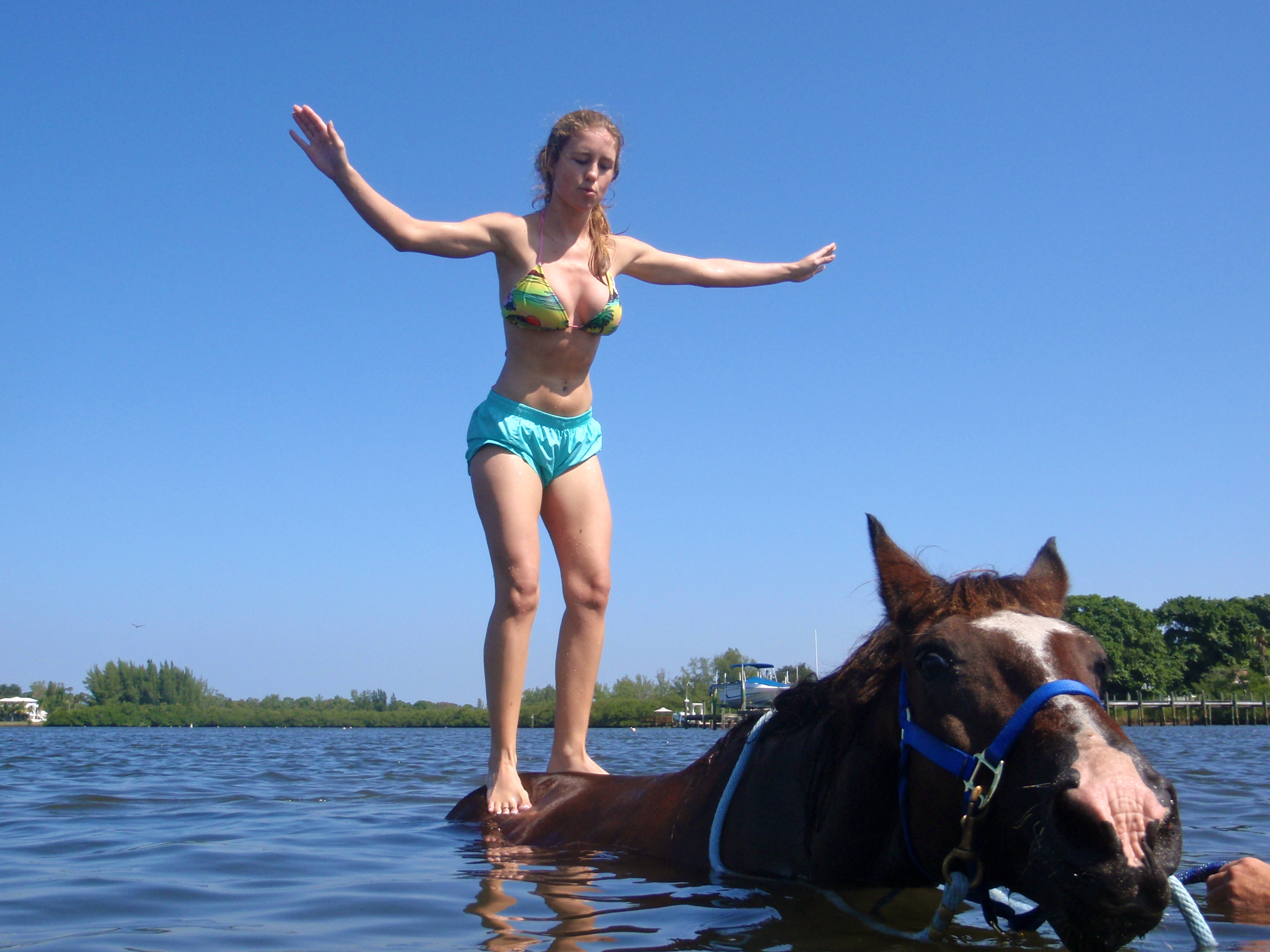Introducing The World To Equine Tourism In Sunshine State